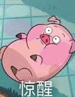 猪头表情图片 猪头表情包微信