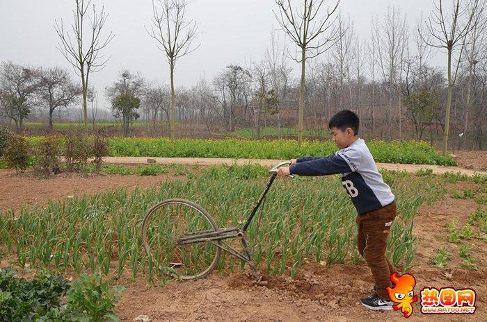 自行车改锄地机图片