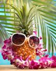 菠萝创意设计 菠萝的创意联想图片