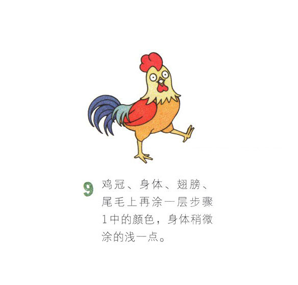 公鸡简笔画图片 彩色大公鸡简笔画步骤
