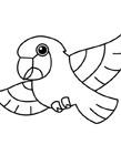鹦鹉简笔画图片大全 鹦鹉怎么画简笔画