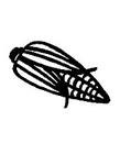 玉米简笔画图片