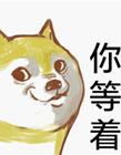 柴犬卡通表情包
