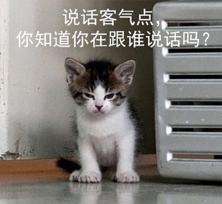 超级凶的表情表情的搞笑图片菜娃娃-图片猫咪-热图网图片