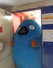 日本吉祥物长得胖是一种什么体验