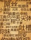 2017年九大流行语