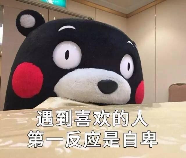 熊本熊找不着对象表情包
