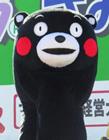 熊本熊怎么火起来的 熊本熊为什么这么火