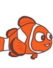 小丑鱼简笔画教程 小丑鱼简笔画画法