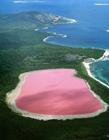 澳大利亚希勒湖风景图片