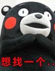 熊本熊单身情歌表情包 熊本熊表情包