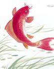 水墨鲤鱼图片大全