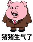 一只粉色的猪的表情包