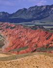 新疆努尔加大峡谷 努尔加大峡谷图片