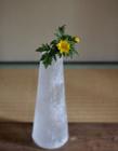 玻璃器皿中的花