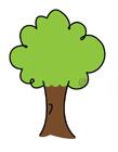 大树的简笔画步骤图片 大树简笔画图片大全