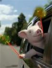 猪拿着风车gif动态图片 猪拿着风车套路表情包