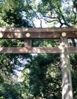 日本明治神宫图片