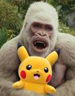 美国电影狂暴巨兽恶搞图片