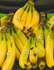 香蕉图片大全
