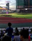 体育场图片 观众爆满的体育场图片