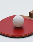 乒乓球用品图片大全 乒乓球体育用品