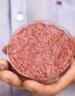 人造肉很快出现美国餐桌 人造肉能吃吗 人造肉是怎么做的