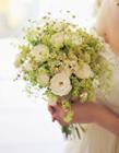 新娘手捧花图片鲜花 新娘手捧花图片大全