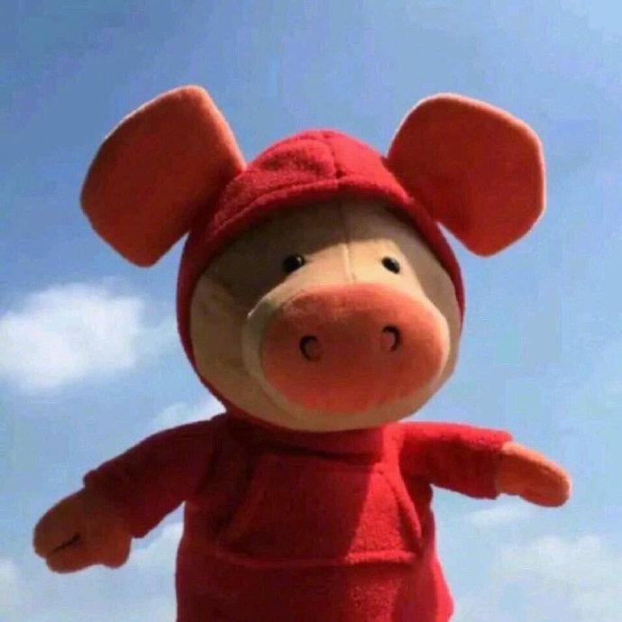 猪玩偶图片