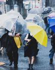 下雨天打伞照片 打伞的人照片