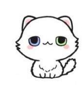 小猫咪动物简笔画画