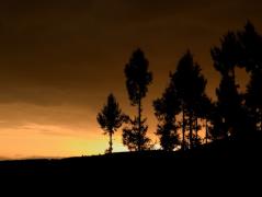 人物风景夕阳摄影剪影高清图片
