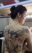 宋佳明星花臂背部纹身图片