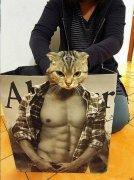 猫创意拍照恶搞肌肉男搞笑图