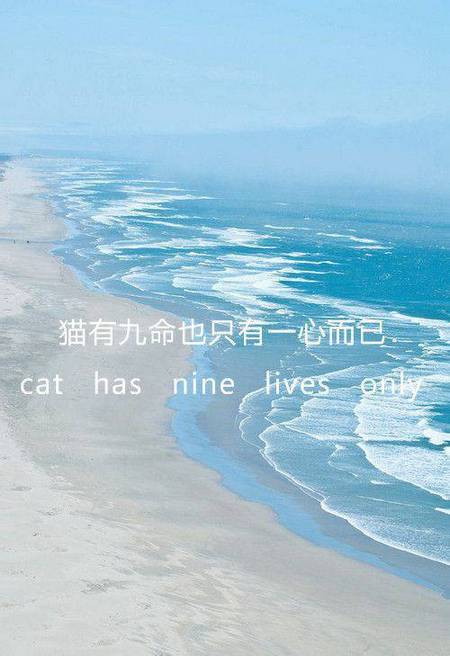 大海背景唯美文字语录图