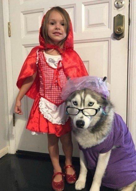 小女孩cos小红帽的图片