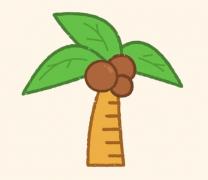 椰子树简笔画教程