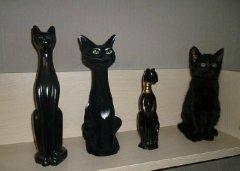 搞笑的猫咪公仔图片